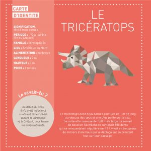 mes-tableaux-stickers-dinosaures-9782359902846_1