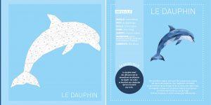 Intérieur tableaux en stickers Animaux des océans