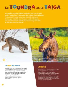 ANIMAUX-bDef_Page_12