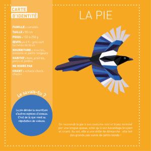 Mes tableaux en stickers - oiseaux