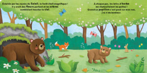 Petit-ours_2